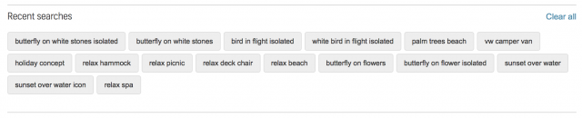 Recent searches done in an image library