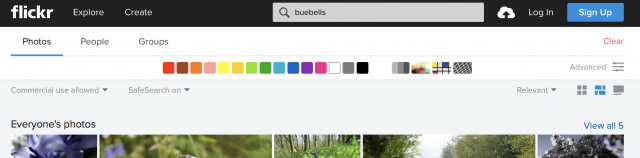 Flickr search box